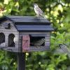 karmnik w ogrodzie z ptakami wildlife garden