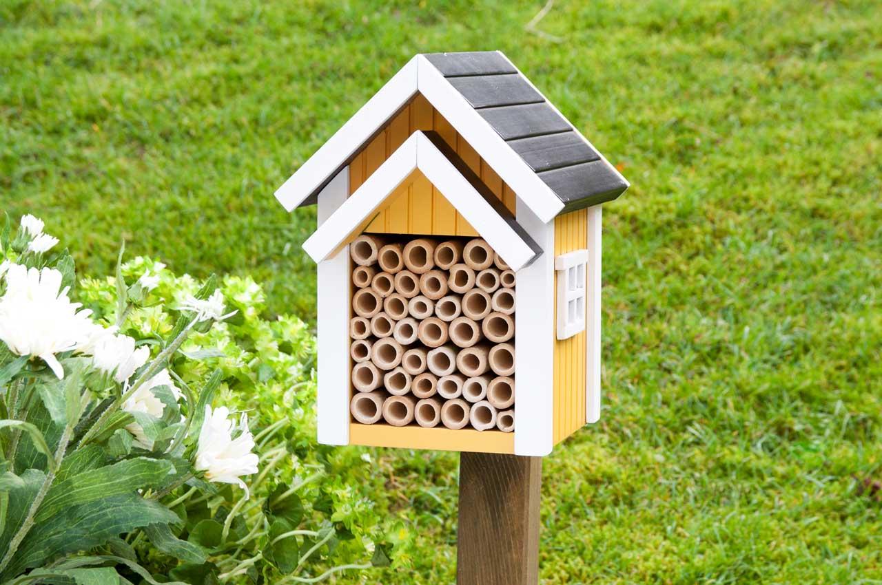 Domki dla pszczół murarek
