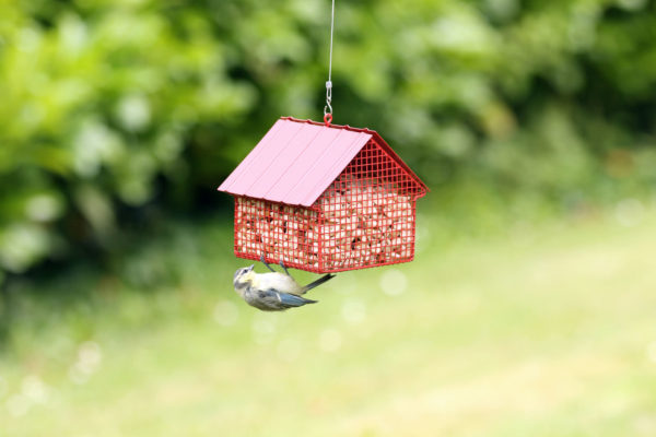 Metalowy Karmnik dla ptaków