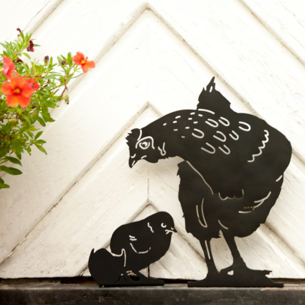 kurczak i kura patrząca na pisklę